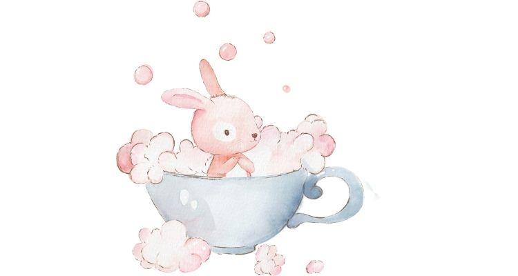can you give a rabbit a bath with shampoo